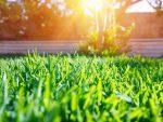 Tipps von Ihrem Makler für mehr Erfolg beim Immobilienverkauf